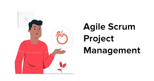 Agile Project Management Video